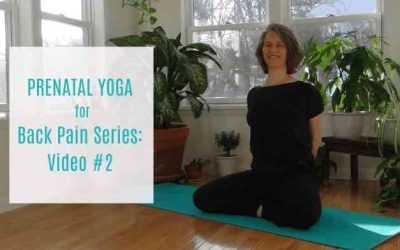 Yoga for Your Back Series: Video #2