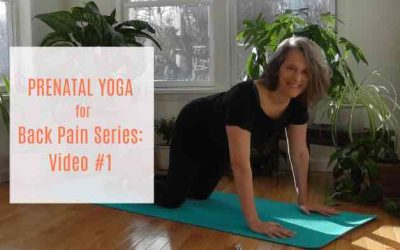 Yoga for Back Pain Series